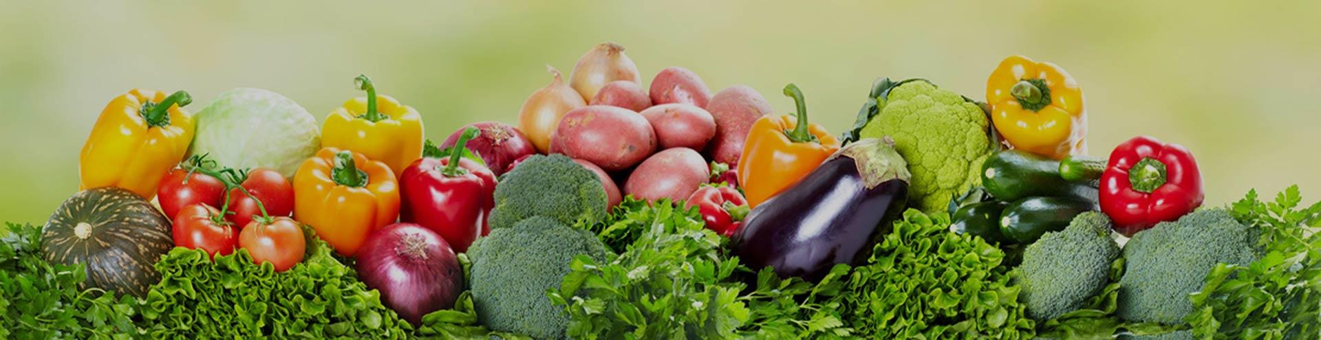 Resultado de imagen de seguridad alimentaria